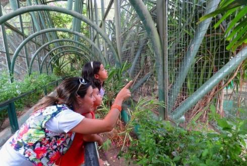 Zoológico - Parque da Cidade - Aracaju
