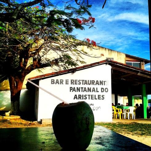 Pantanal do Aristoteles