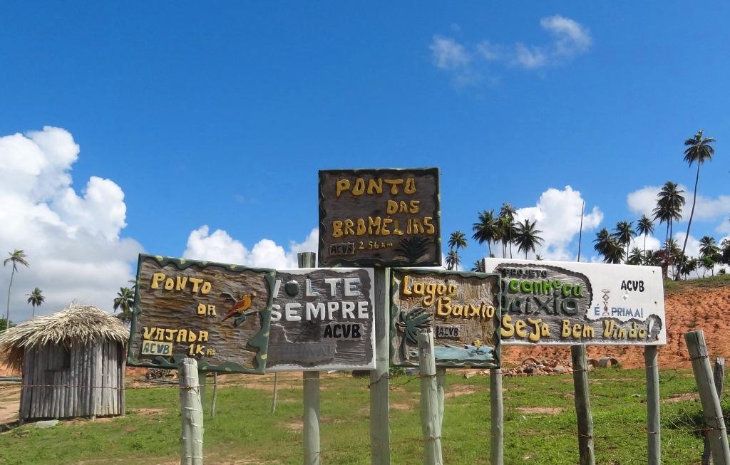 Praia Do Baixio Bahia Km 121 Da Linha Verde Miss Check In