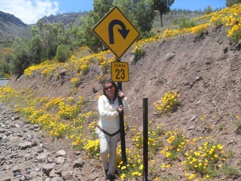 Curvas Numeradas - Cordilheira dos Andes - CHILE