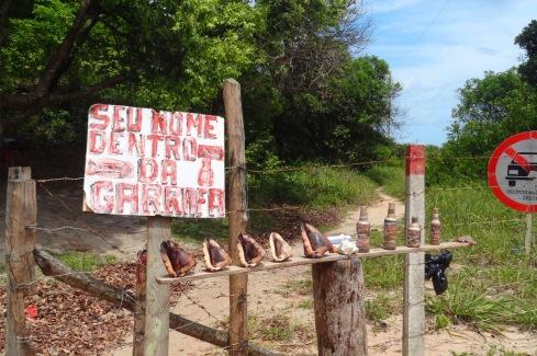 Chegada a Praia do Carro Quebrado - ALAGOAS