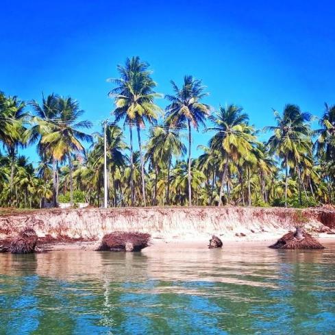 Mangue Seco - Litoral Norte da Bahia