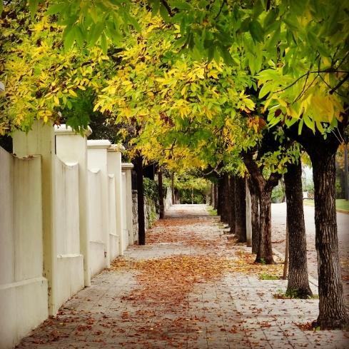 Ruas de Outono - Alta Gracia - Córdoba - ARGENTINA