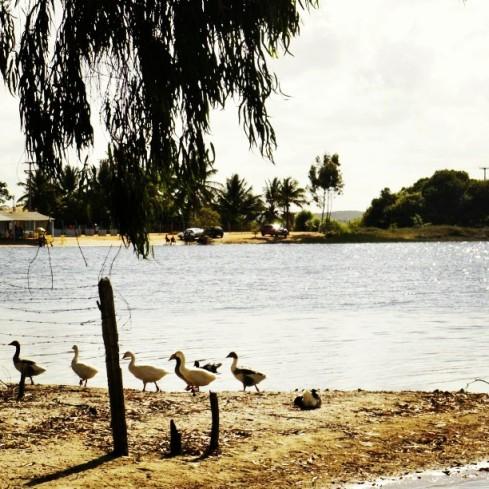lagoa-azul-abais-sergipe-foto-do-ig-misscheck
